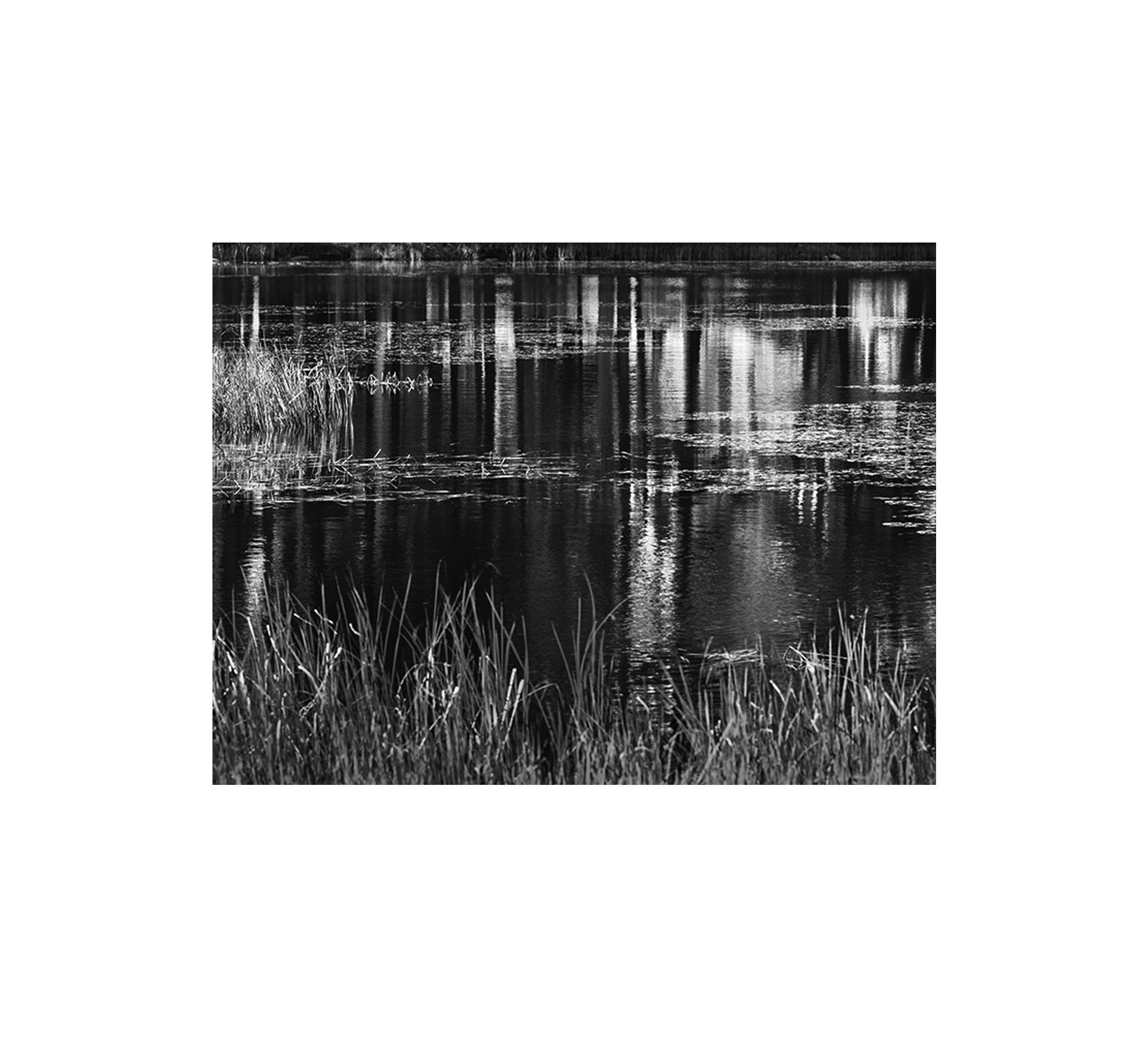 Water Rhythms