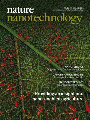 Our review was chosen as the cover for  Nature Nanotechnology  (Volume 14, Issue 6, June 2019).