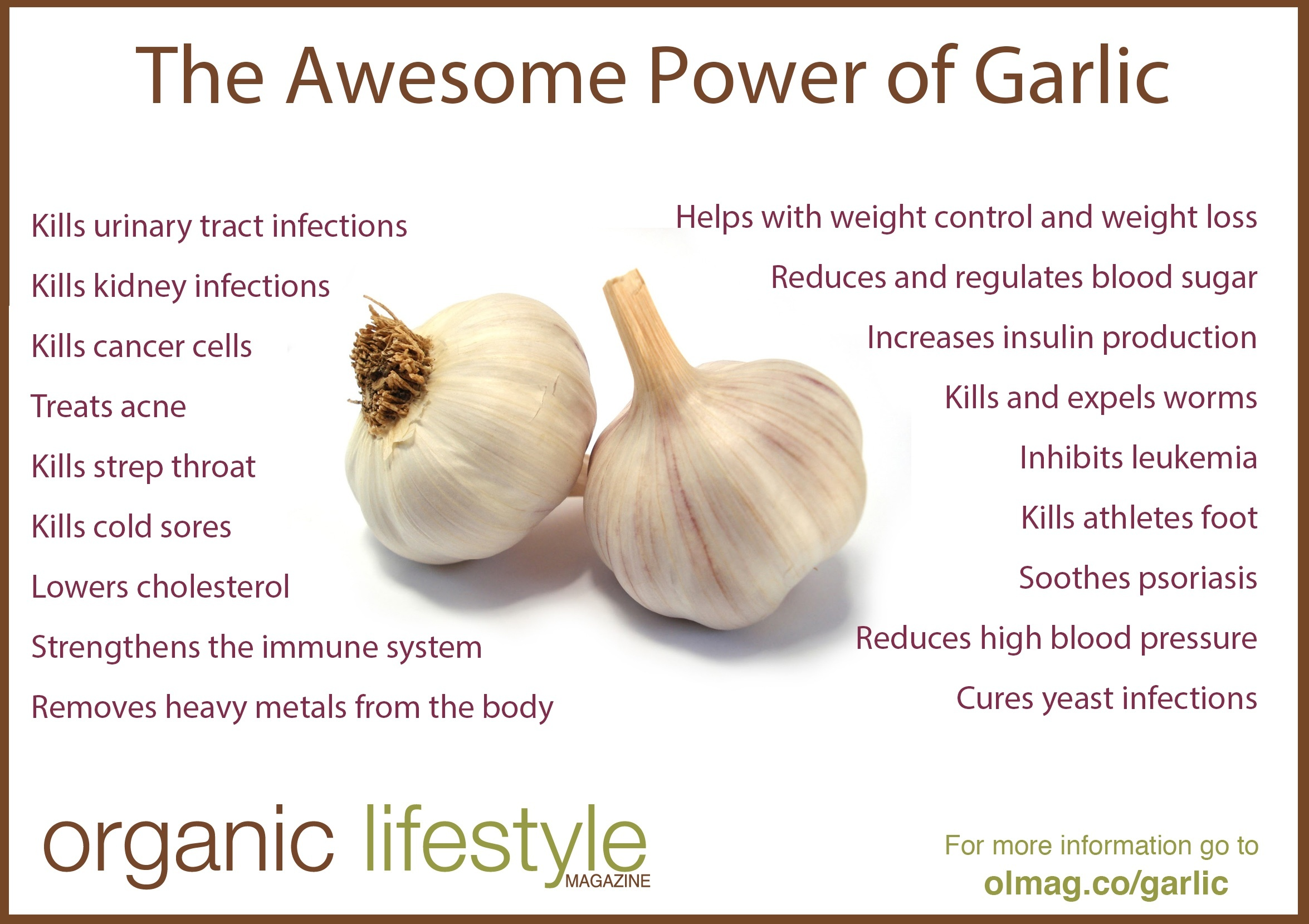 garlic-infographic.jpg