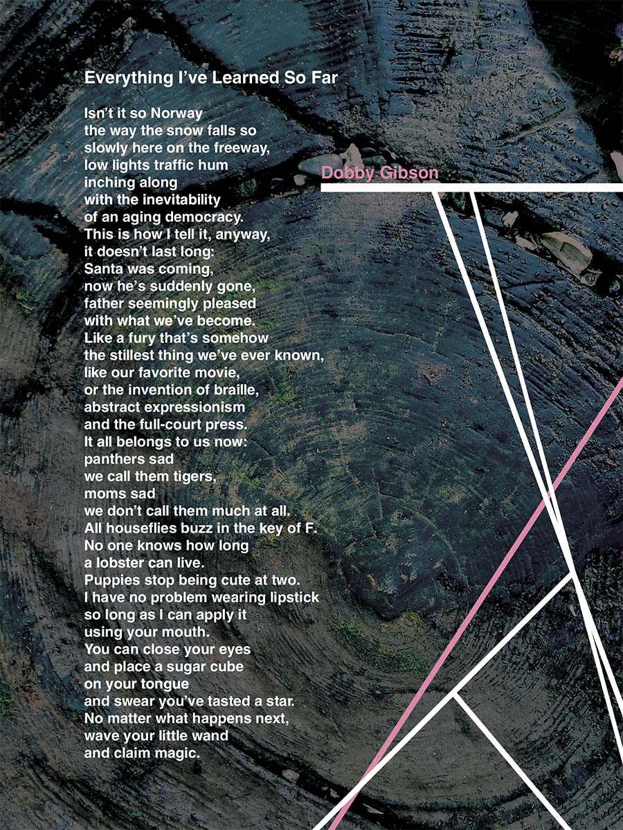 Issue 11 / Broadside by Layne Ransom