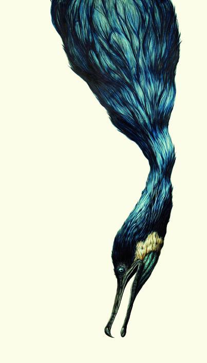 """Cormorant"" by George Boorujy"
