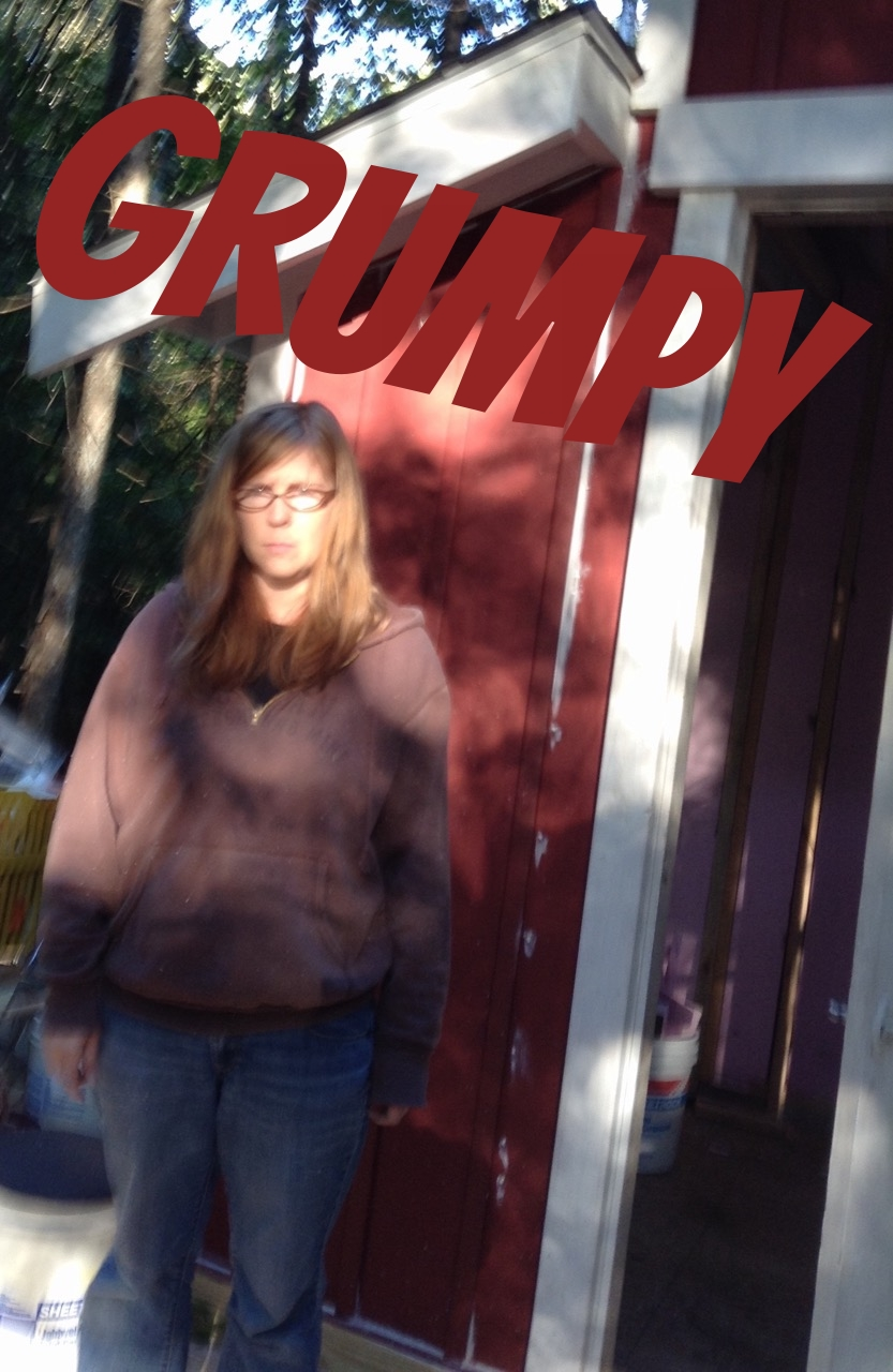 """While building our tiny house in the woods Pauly vetoed one of my design ideas and immediately snapped this photo of the frowny aftermath. """"I'm going to call this one 'Grumpy Dana!'"""" he said cheerfully."""