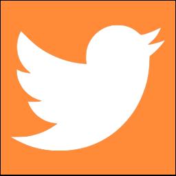 Little Bird Twitter