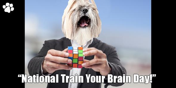 BossHam-Train-Your-Brain-TW.png