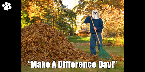 BossHam-Make-A-Difference-Day-TW.png