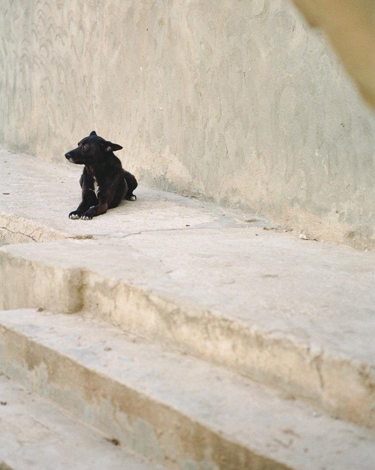 tunisia-film-34.jpg