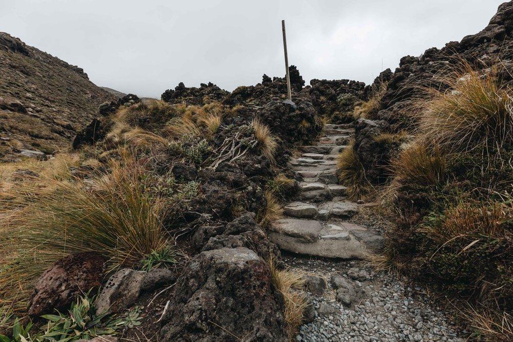 New Zealand - Hobbiton, Tongariro and the countryside