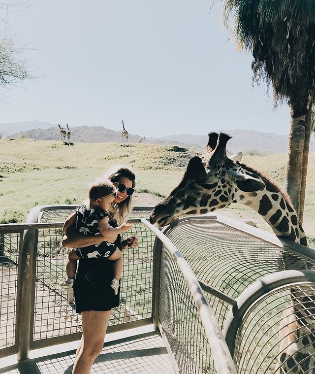 There is nothing better than experiencing the world through your child's eyes! What a fun afternoon at the Living Desert Zoo. By far the best zoo I've ever been to. Shout out to Bob the zoo keeper who snapped the epic photo of ma, pa, pilla and I. Really nailed it. 😆🤦🏼‍♀️🤷🏼‍♀️