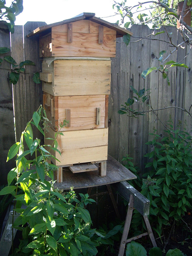 Homemade Bee Hive, C redited by lehua_mc, Flickr