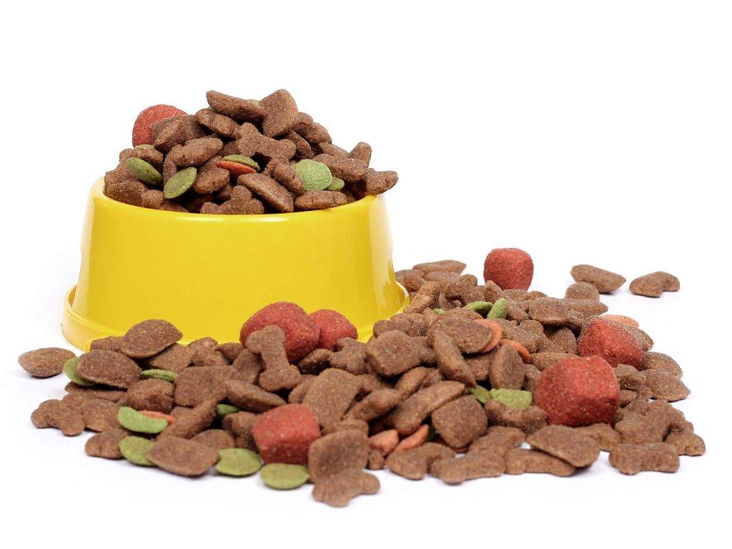 comida perro.jpg