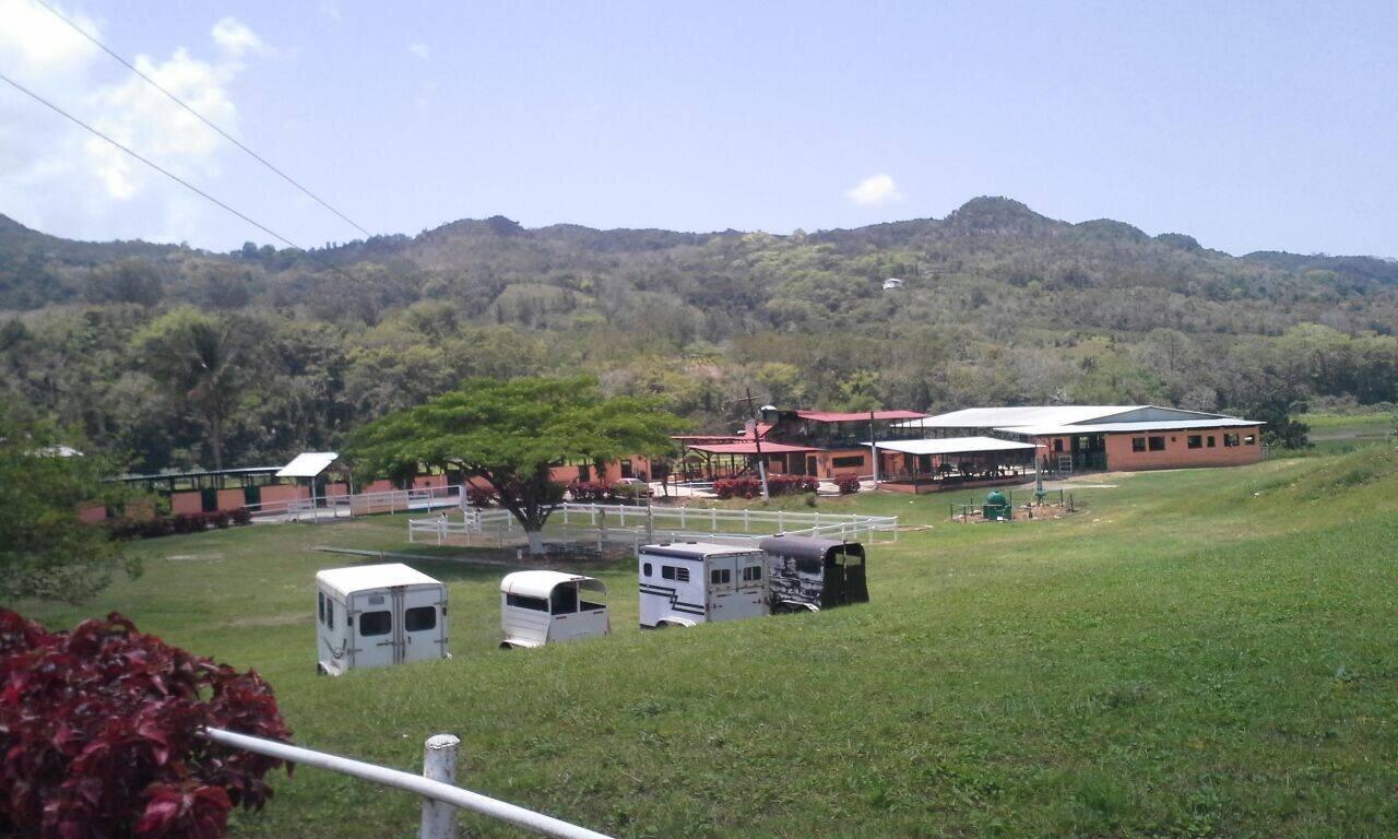 HACIENDA LA DIAMANTERA - Carr. 6685 Norte, Bo. Río Arriba Poniente, Manatí, PR787-598-7655 y 787-317-9568