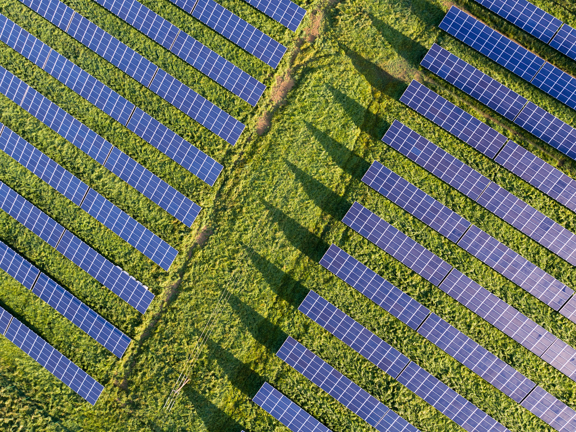 solar power over grass.jpg