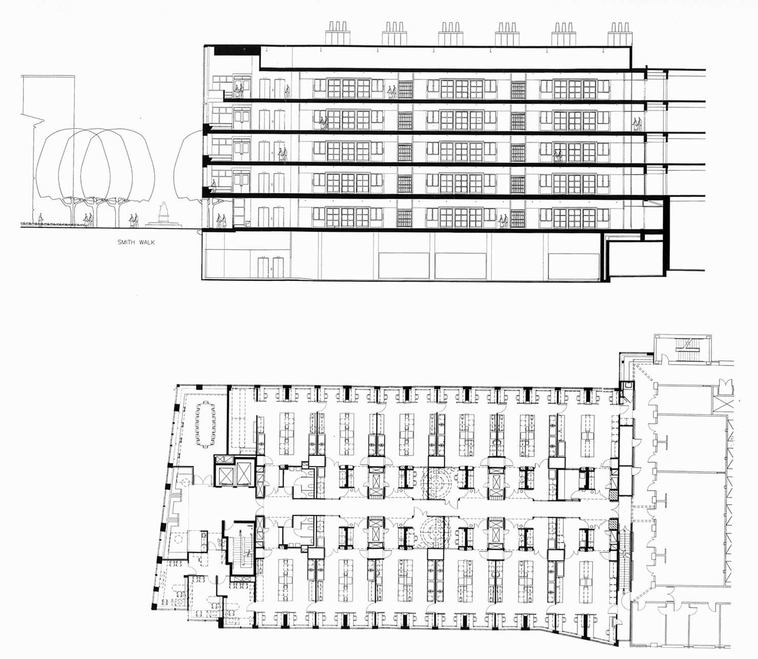 Section and Typical floor plan