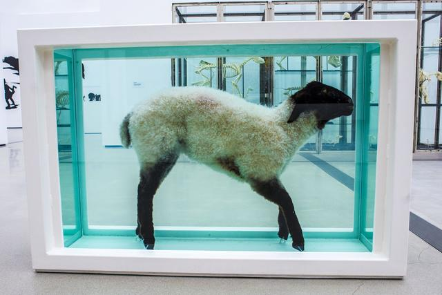 Away from the Flock by Damien Hirst_The Broad Press Preview_Annie Lesser_Sept 16 2015.jpg