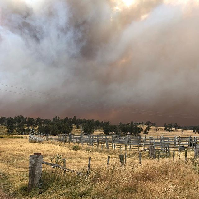 The office was shut today as we assessed the risk to defend 'the marsh' in the Victoria Valley. We called it a day and headed out with @oj_lindsay after a long night and nervous day. Stay safe everyone and a huge thank you to our emergency services. . . . #bushfire #tasmania #fire