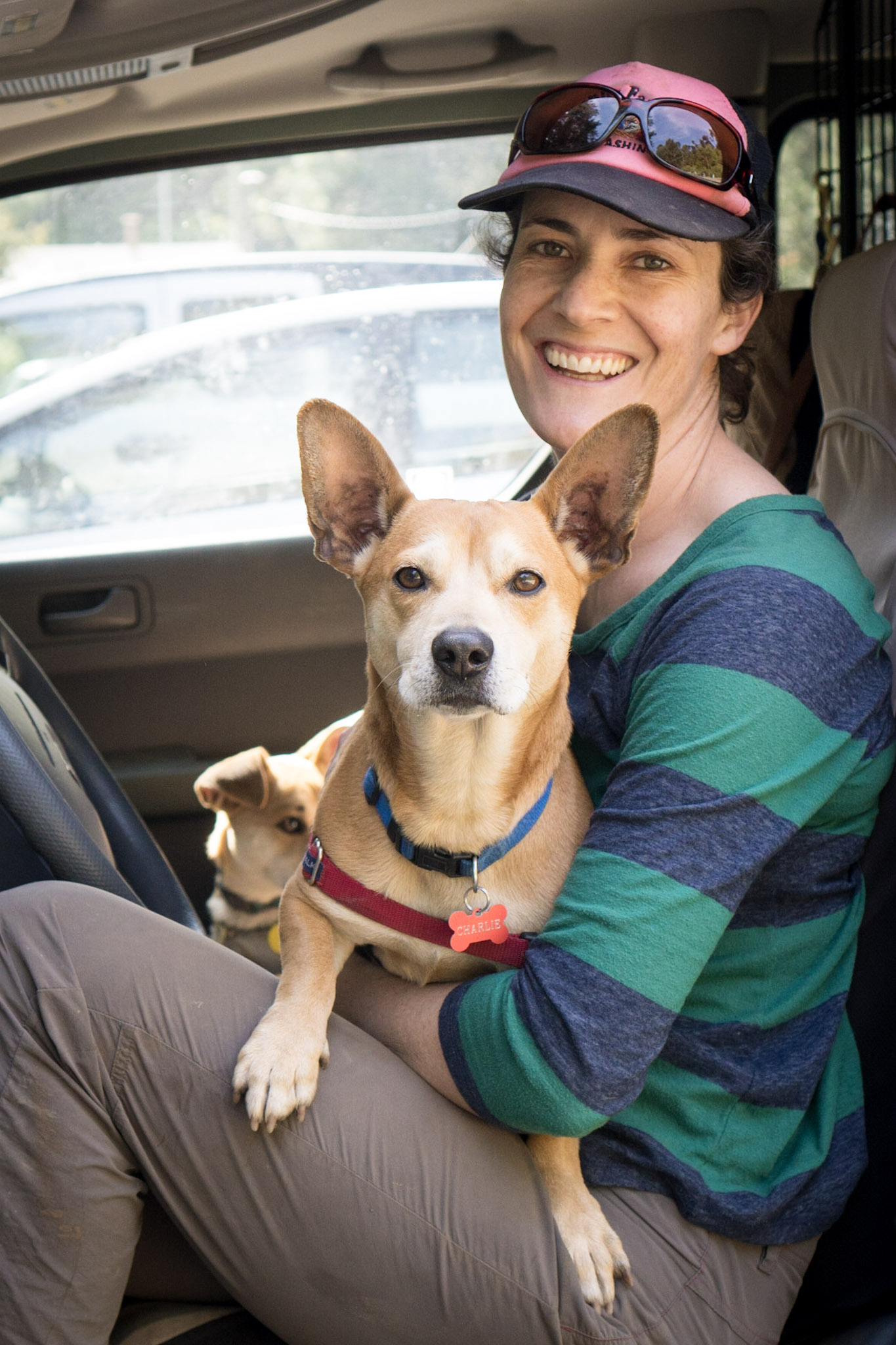 Liz WIlliams dogtec Oakland certified dog walker East Bay