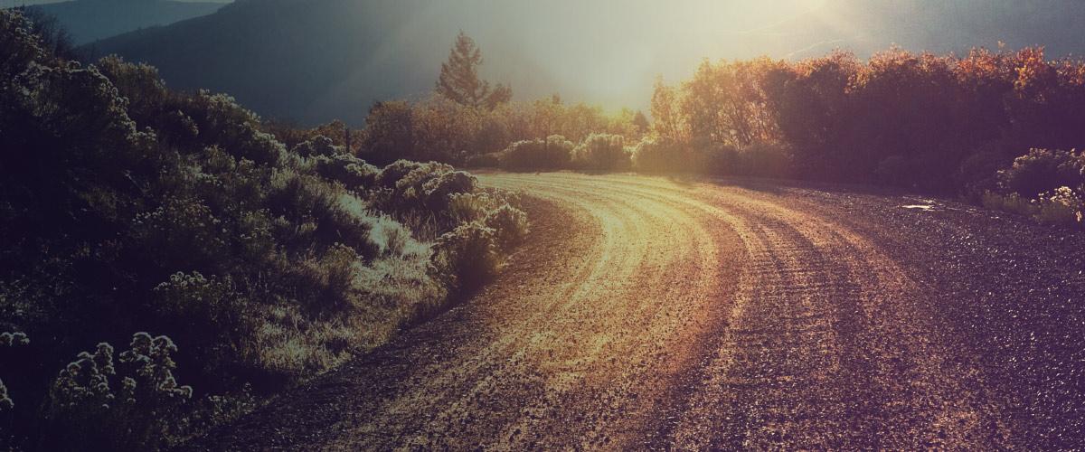 Paving the Path