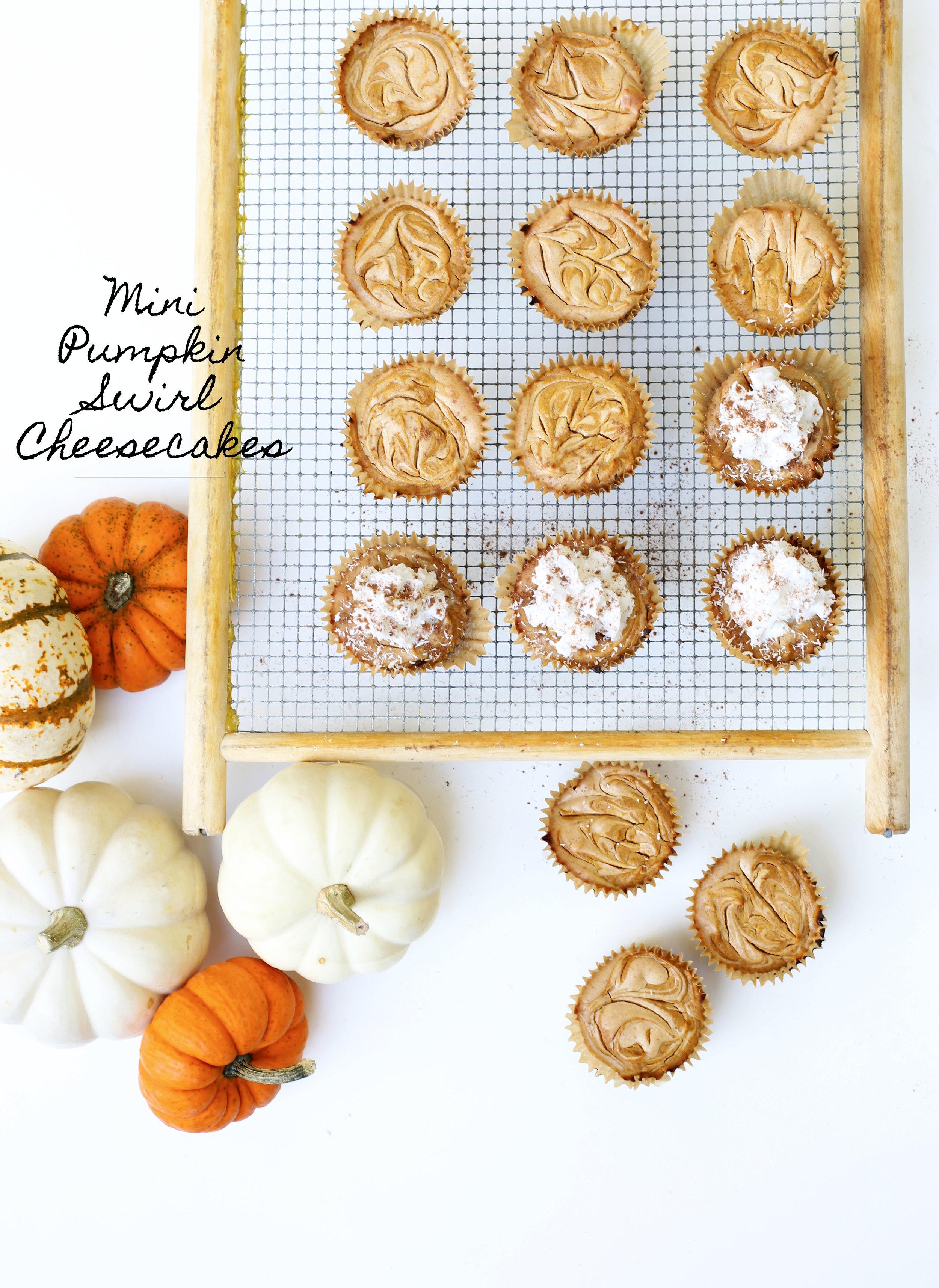 pumpkinswirlcheesecakes.jpg