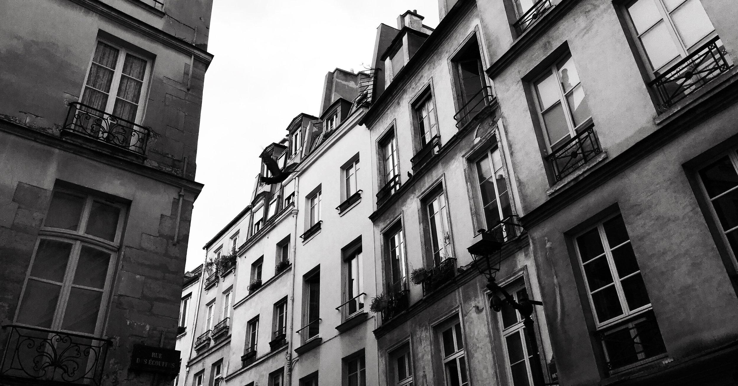 ORELLANA_PARIS3.jpg