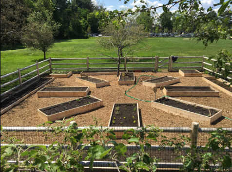 The finished Community Garden at The Fessenden School, built during on                    of my 9th grade history PBL units