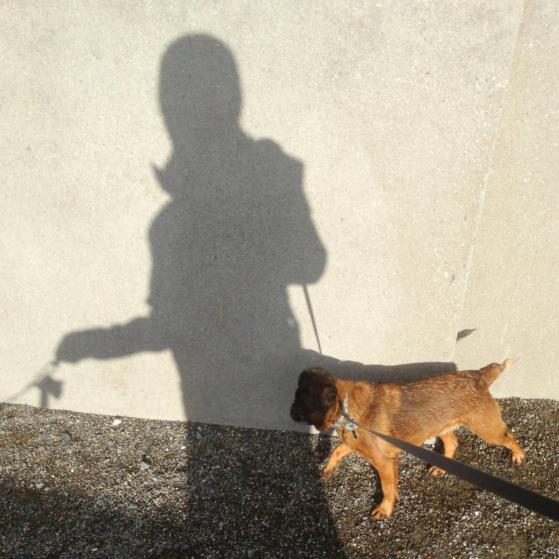 Shadow walk with Harley