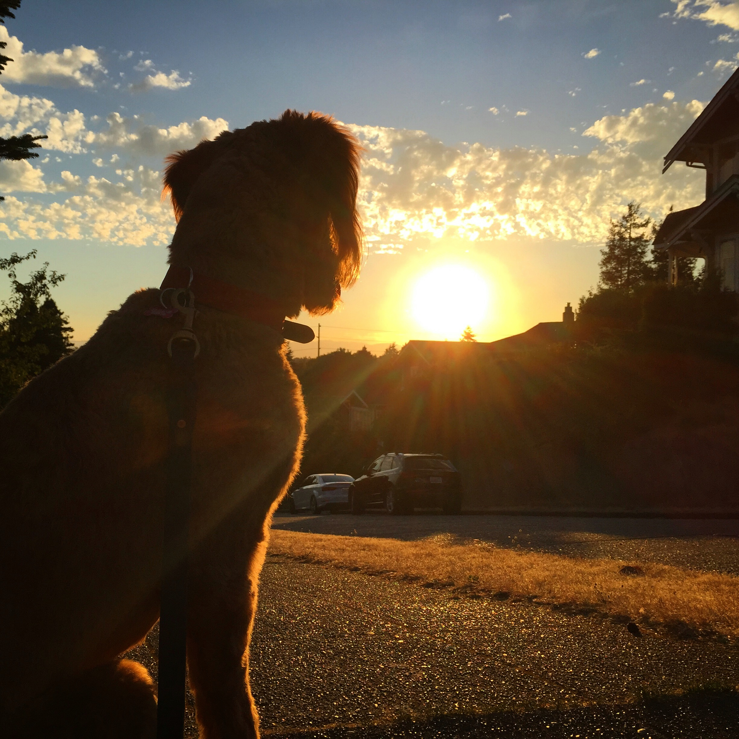 Sunset with Ruby