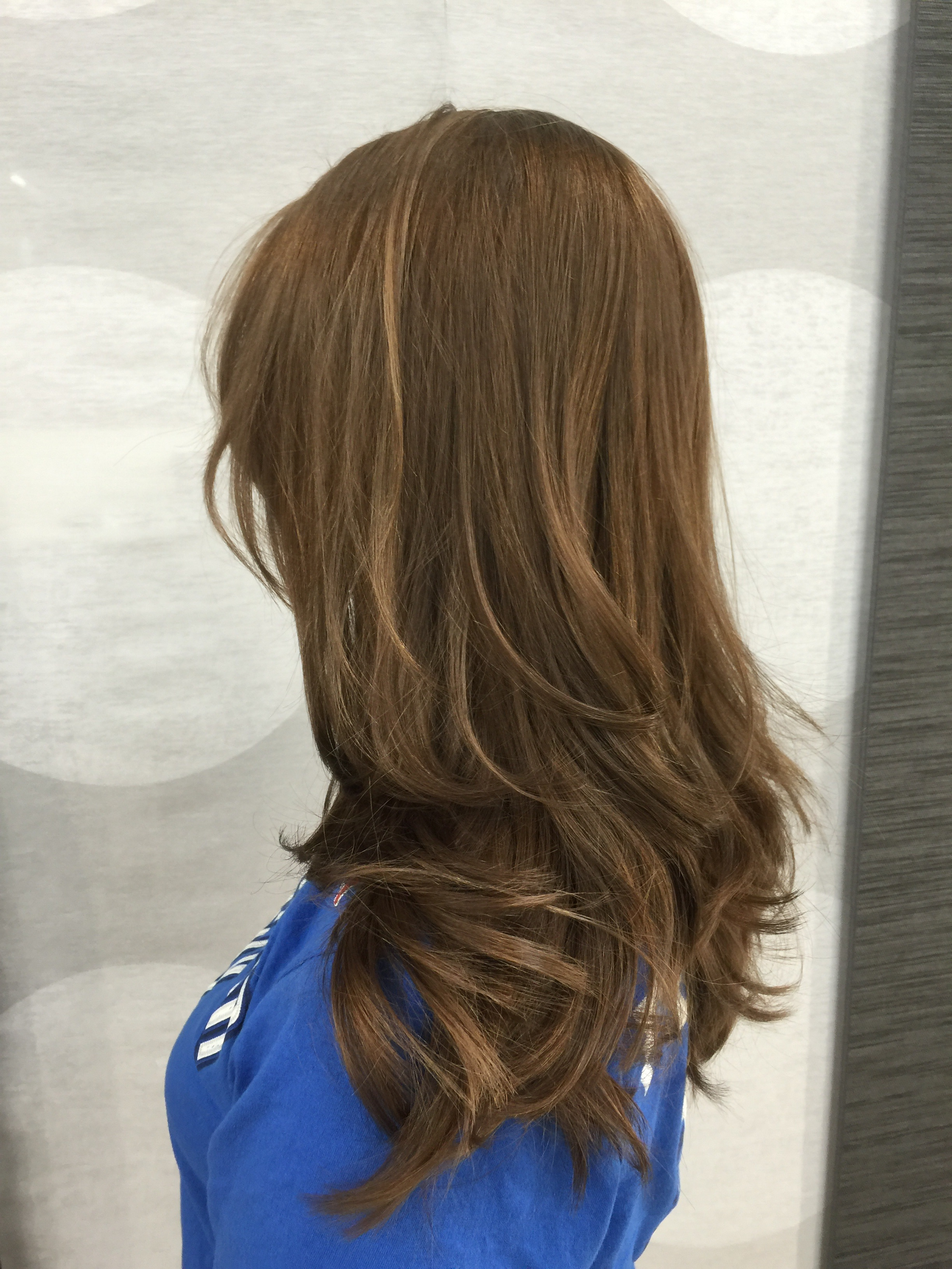 """The final result, a rich, dimensional """"Bronde."""""""