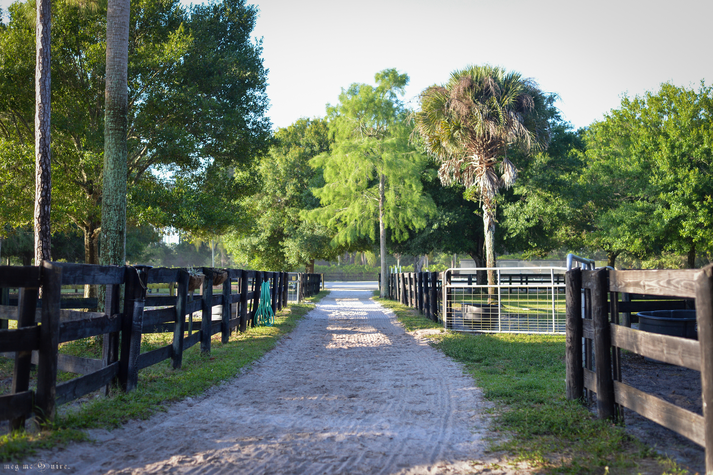 View from the barn leading down to the arena