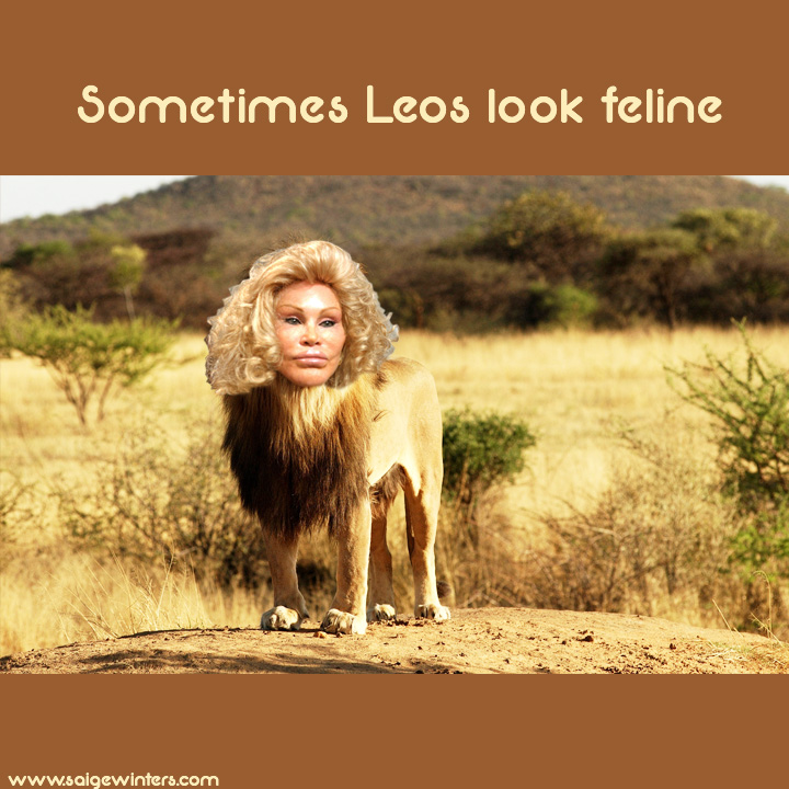 lion lady.jpg