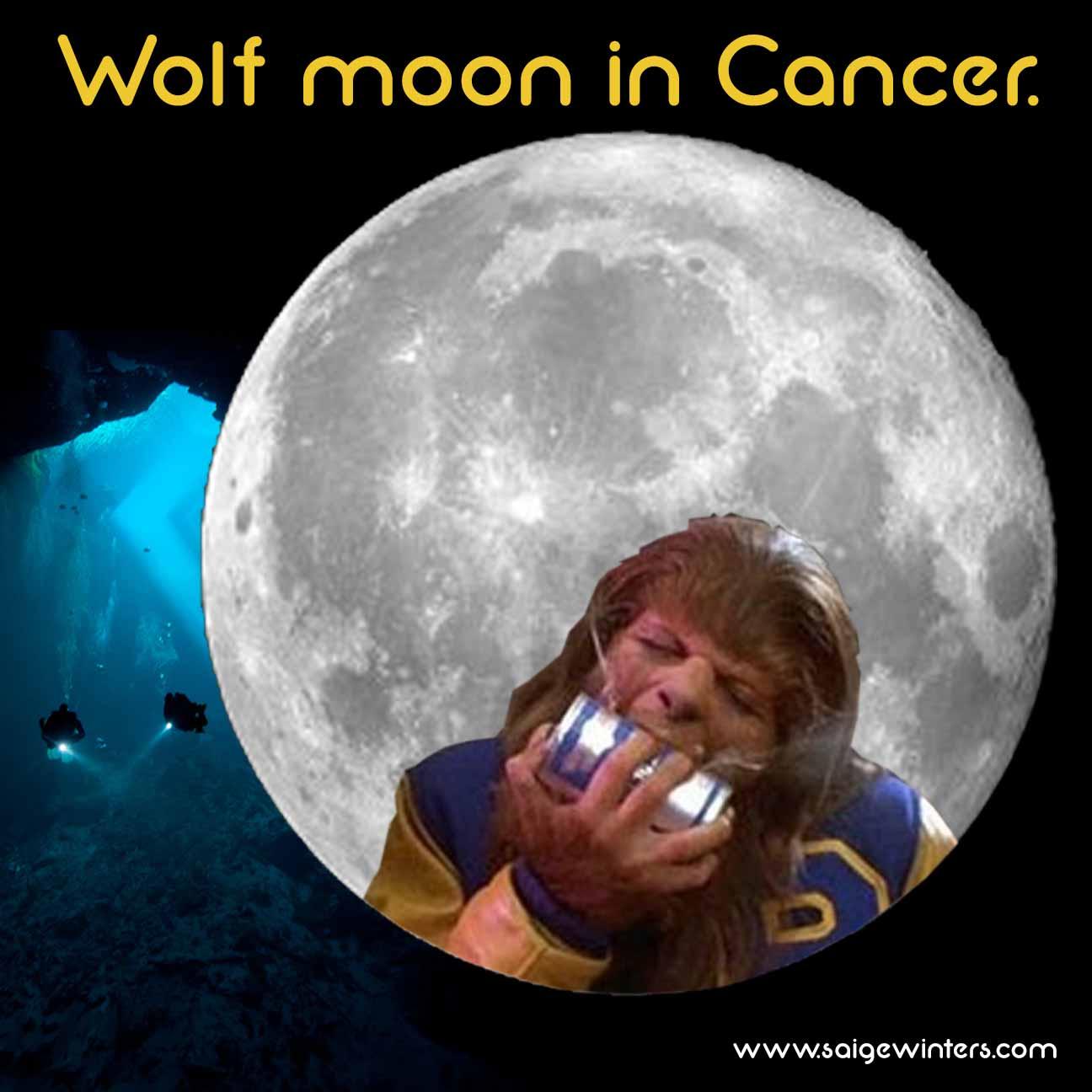 full wolf moon.jpg
