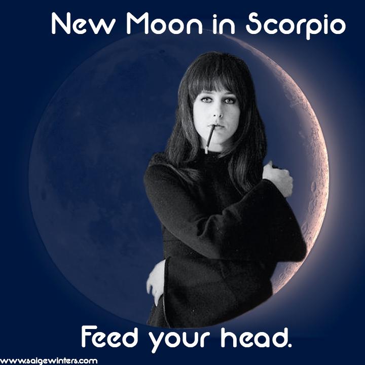 new moon in scorpio.jpg