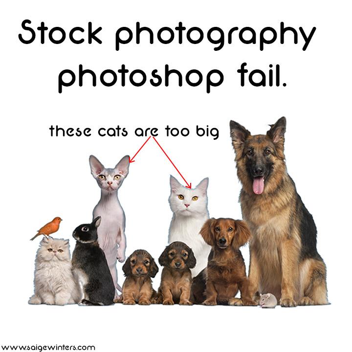 stock photo fail.jpg