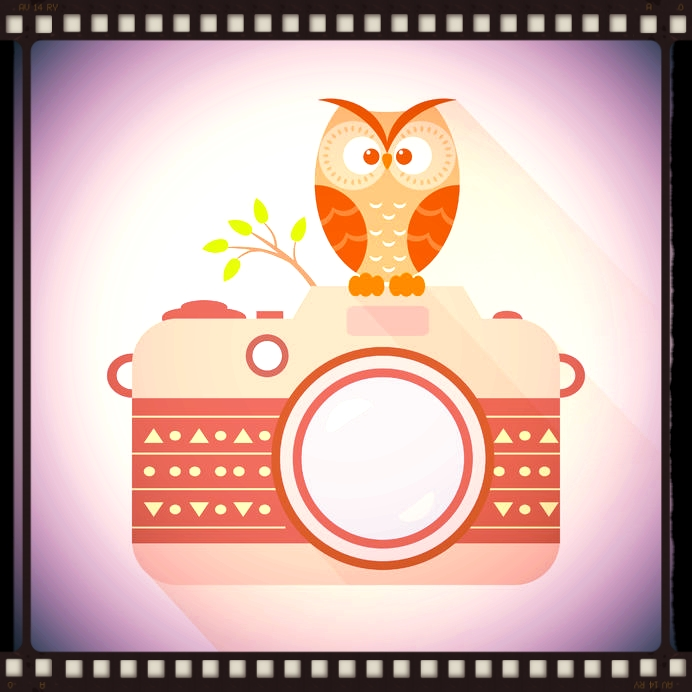 SmallerOwlCamera.jpg