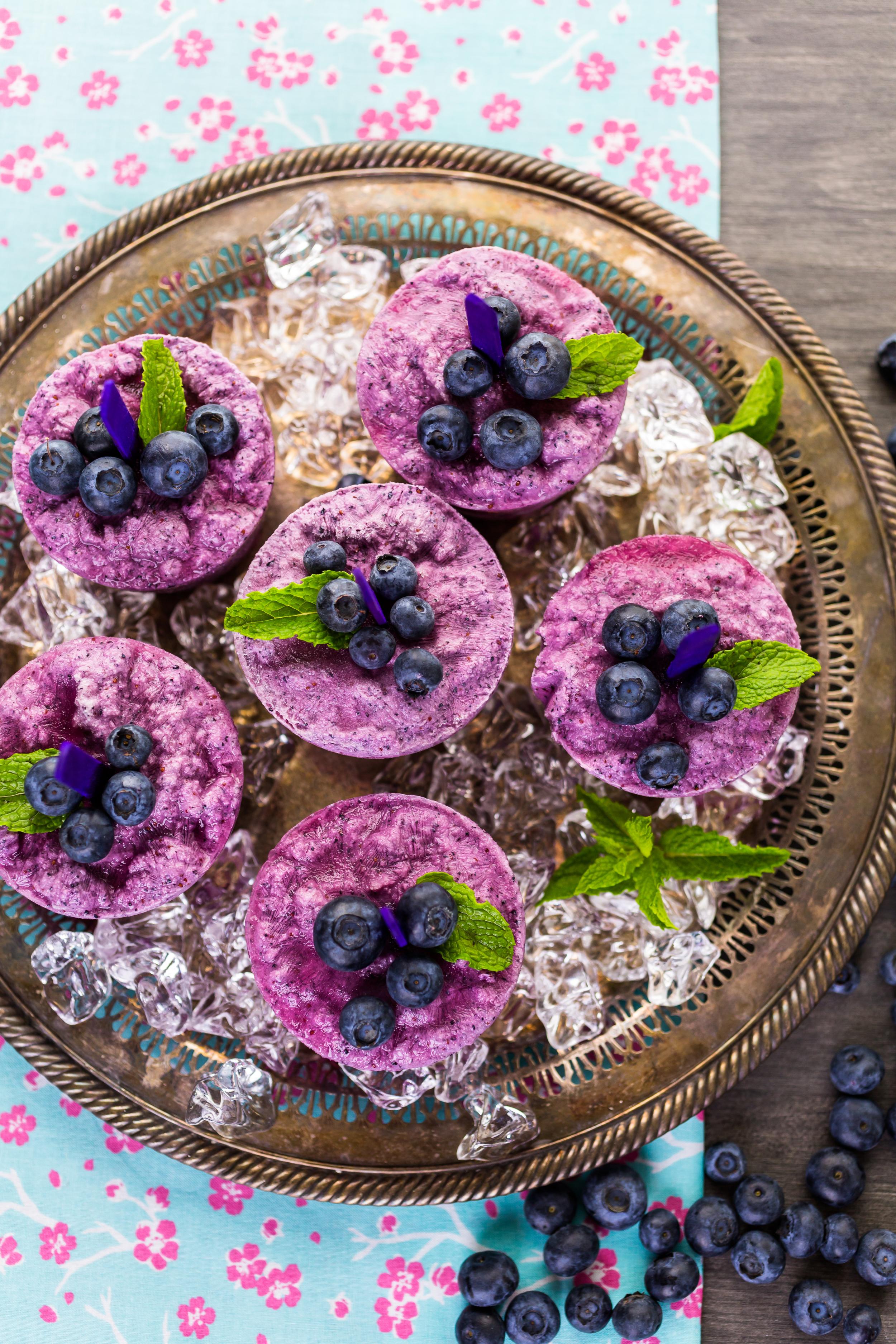 Blueberry-Lemon popsicles!