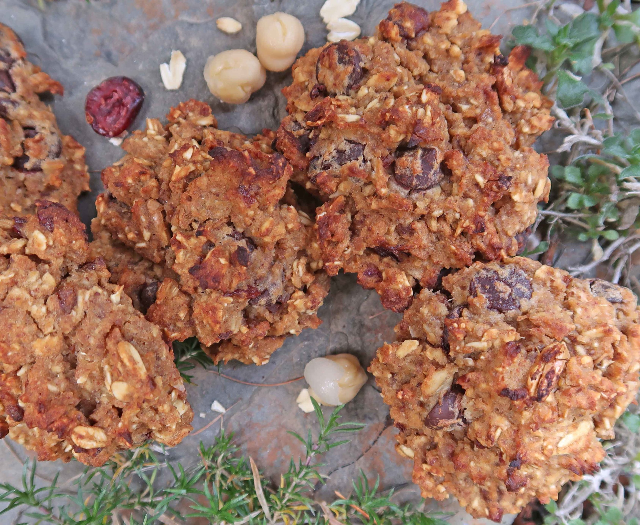 chocolate chip chickpea cookies 2-  by 2HealthyFitVegans