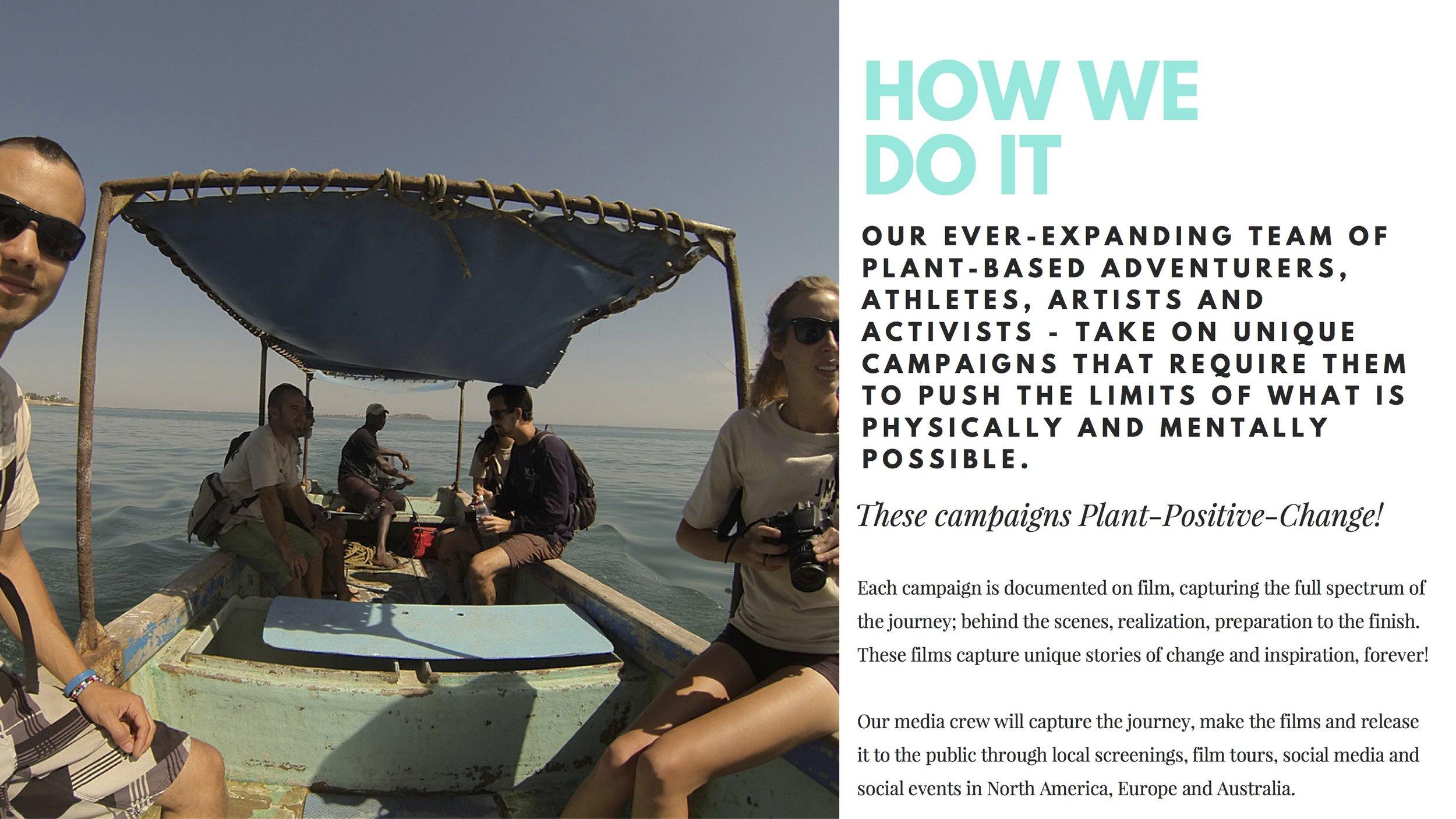4 Plant Positive Change Foundation.jpg