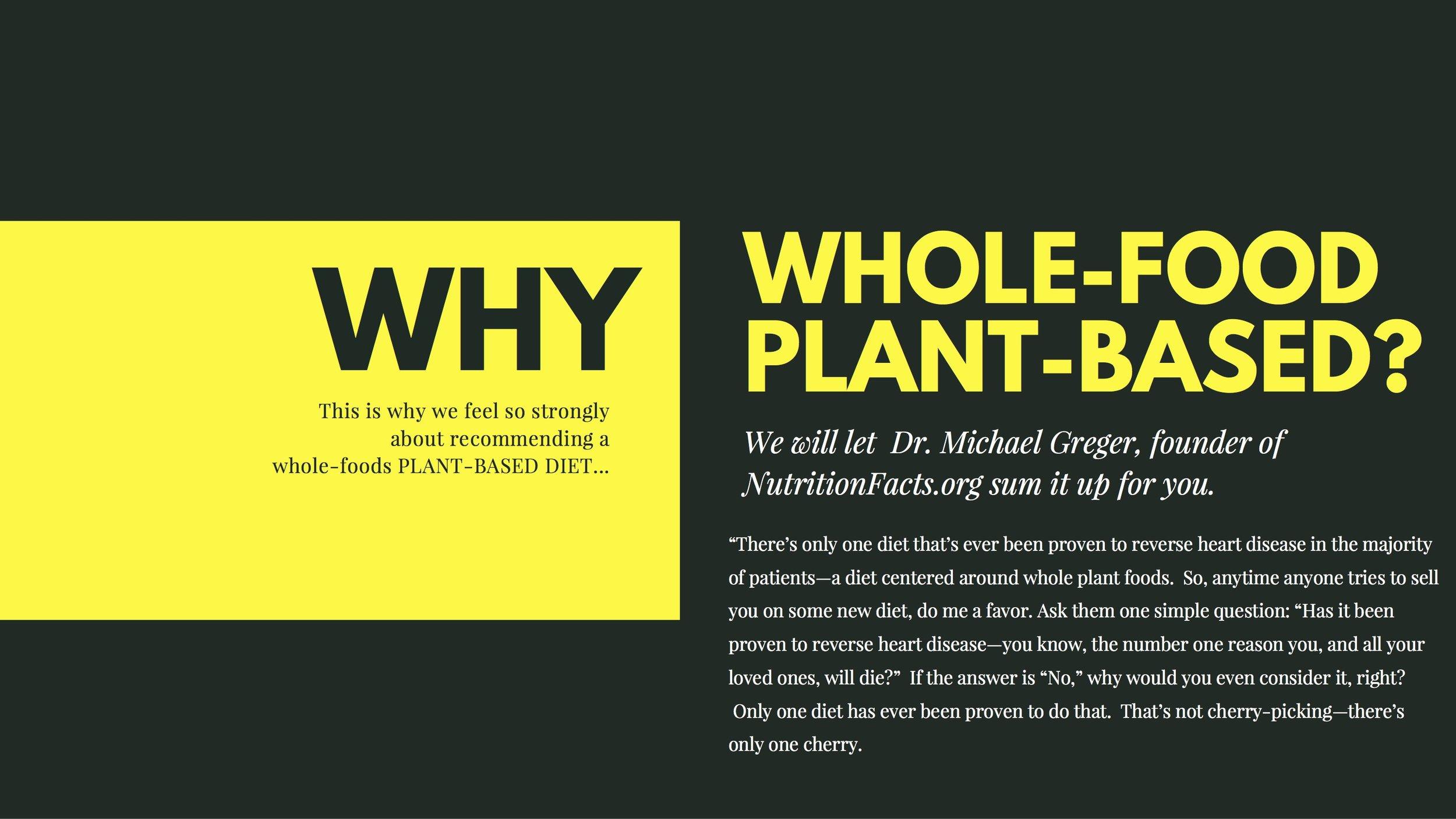 12 Plant Positive Change Foundation.jpg