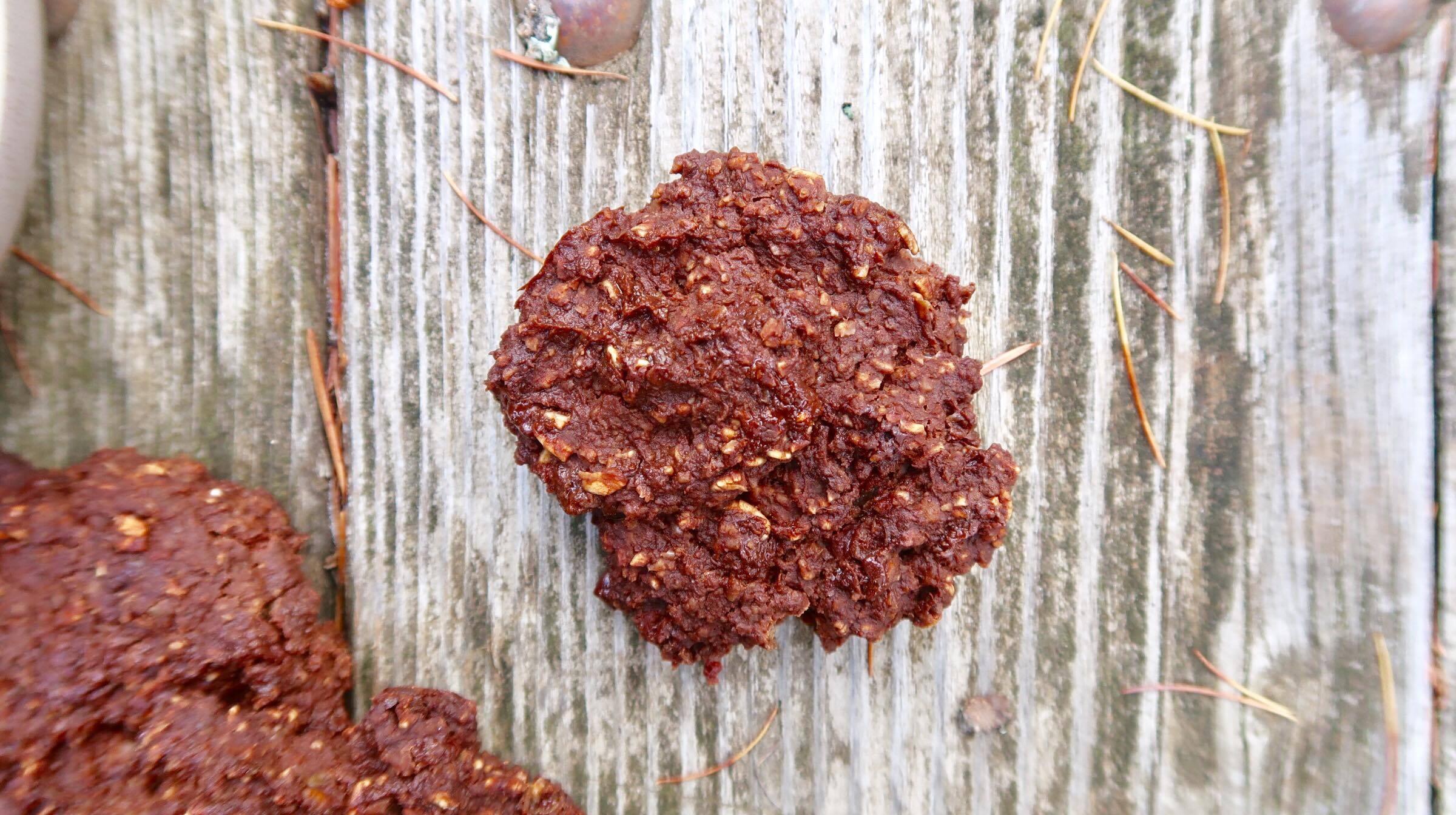 nutritious-chocolate-chip-cookie-single cookie.jpg
