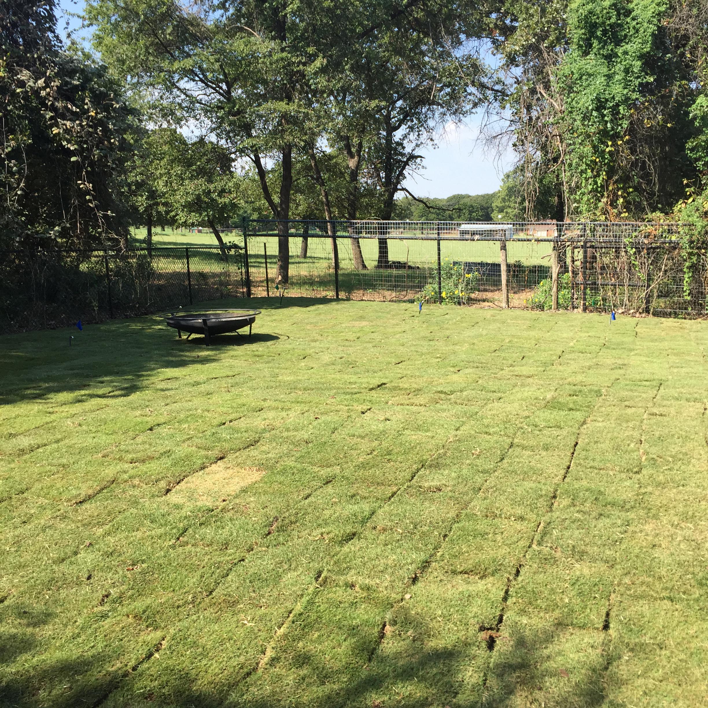spring-grass-square.jpg