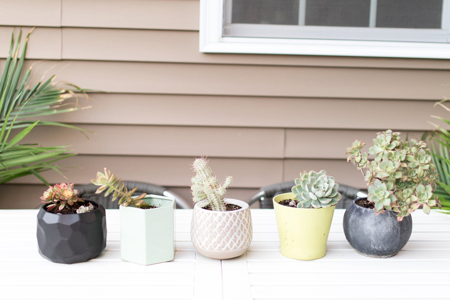 Sabrina Reis Photography | Minneapolis Photography | Patio Update_0017.jpg