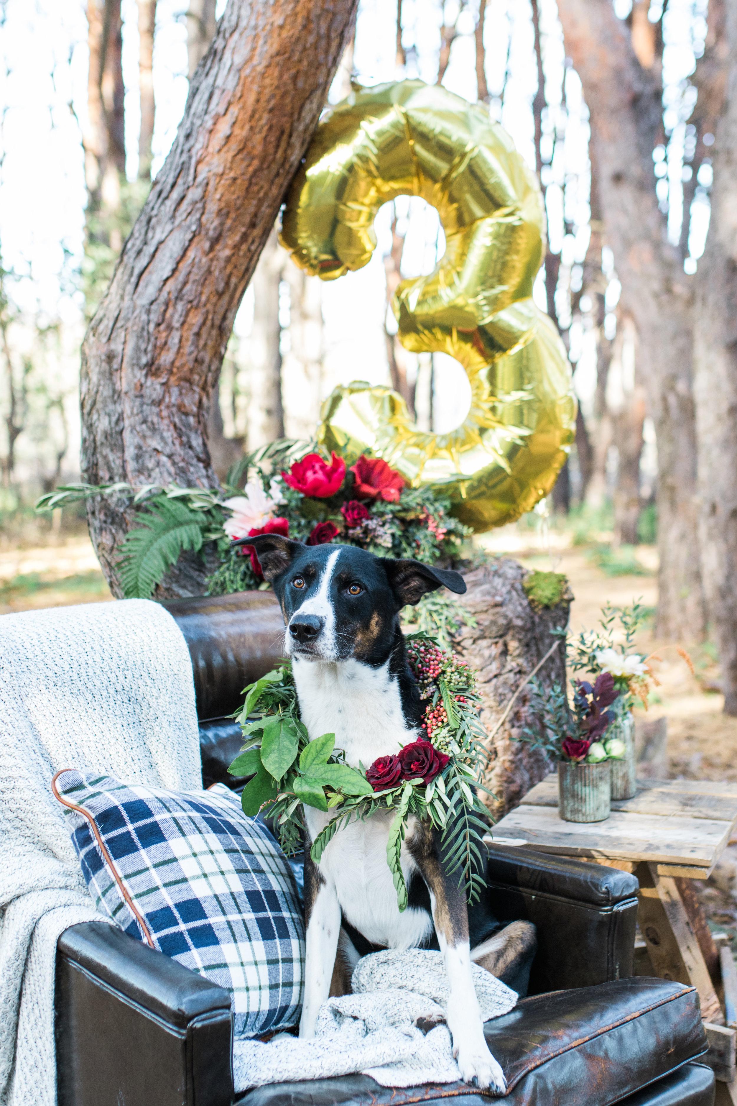 Sabrina Reis Photography - Sullvan's Birthday Soiree - Minneapolis-48.jpg