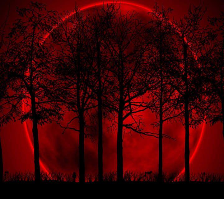 745aa55f0452ac0ef3b80ec3d9206f4f--beautiful-moon-beautiful-places.jpg