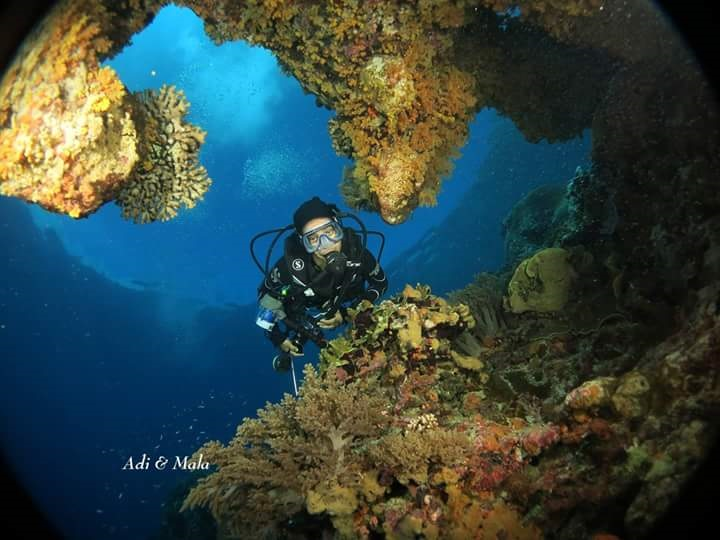 indonesia-scuba-diving.jpg