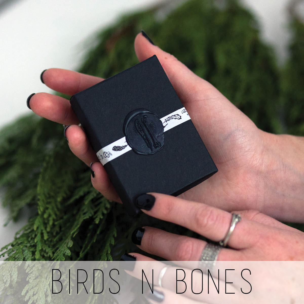 birds n bones.jpg