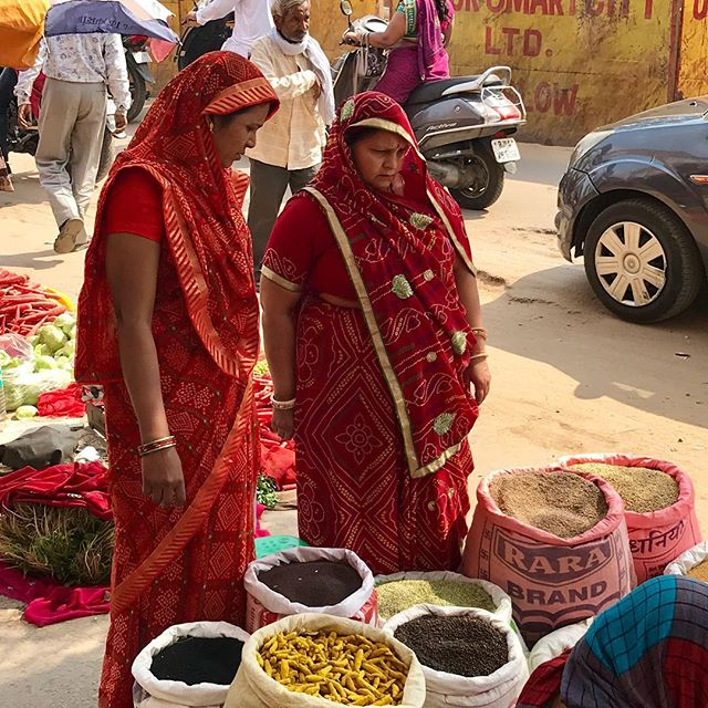 Missing the many faces and scenes of Jaipur #jaipur #india #jaipurjewellery #adelphelondon #adelphejewellery #jaipurjewels #phillipahastings #edenhastings #suntemplejaipur #emeralds