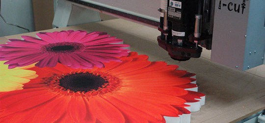 flowers-cut-crop-u7629.jpg