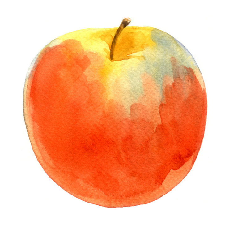 red-apple-watercolor-on-whitebackgroung-596357342_4005x1783.jpg