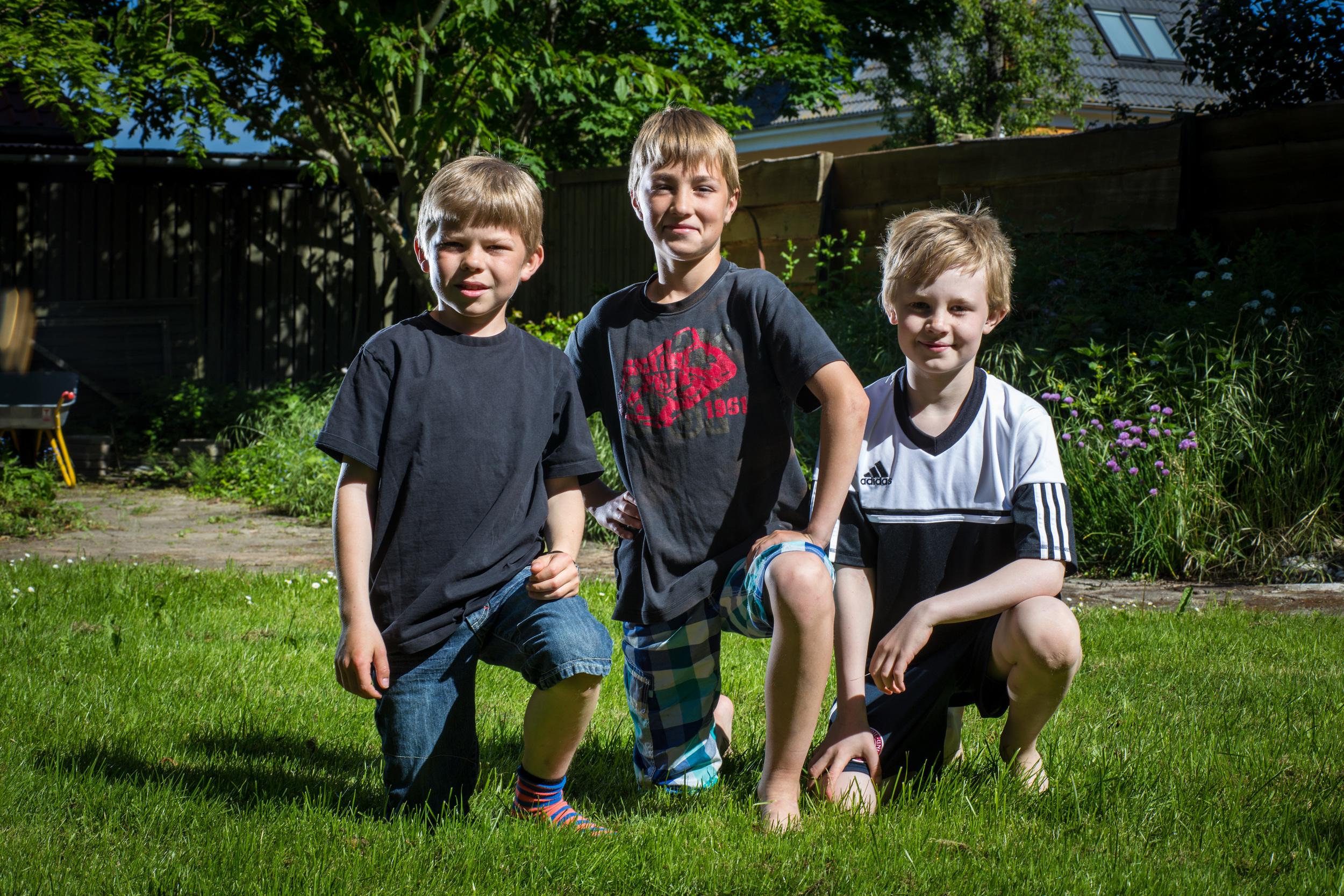 Hans, Sofus og Albert