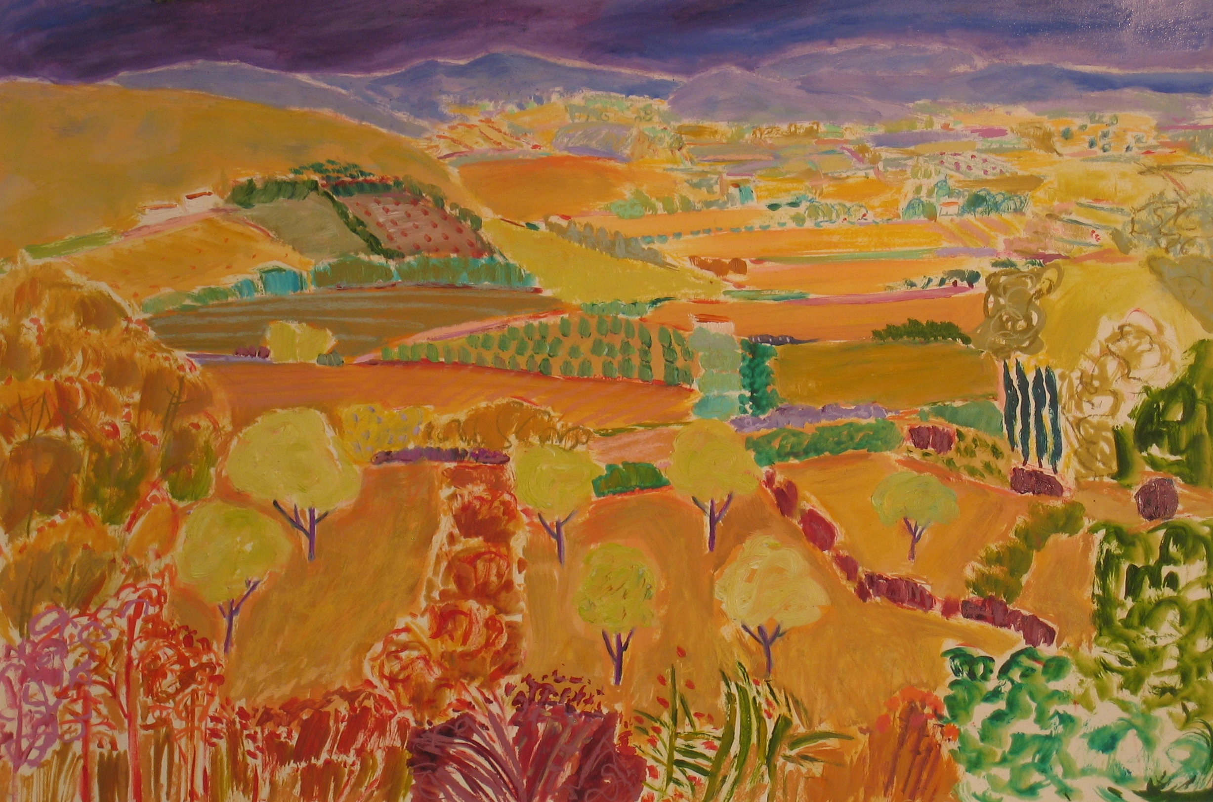 L Olive Orchards in the Sun (26X40)ins oil on paper.jpg