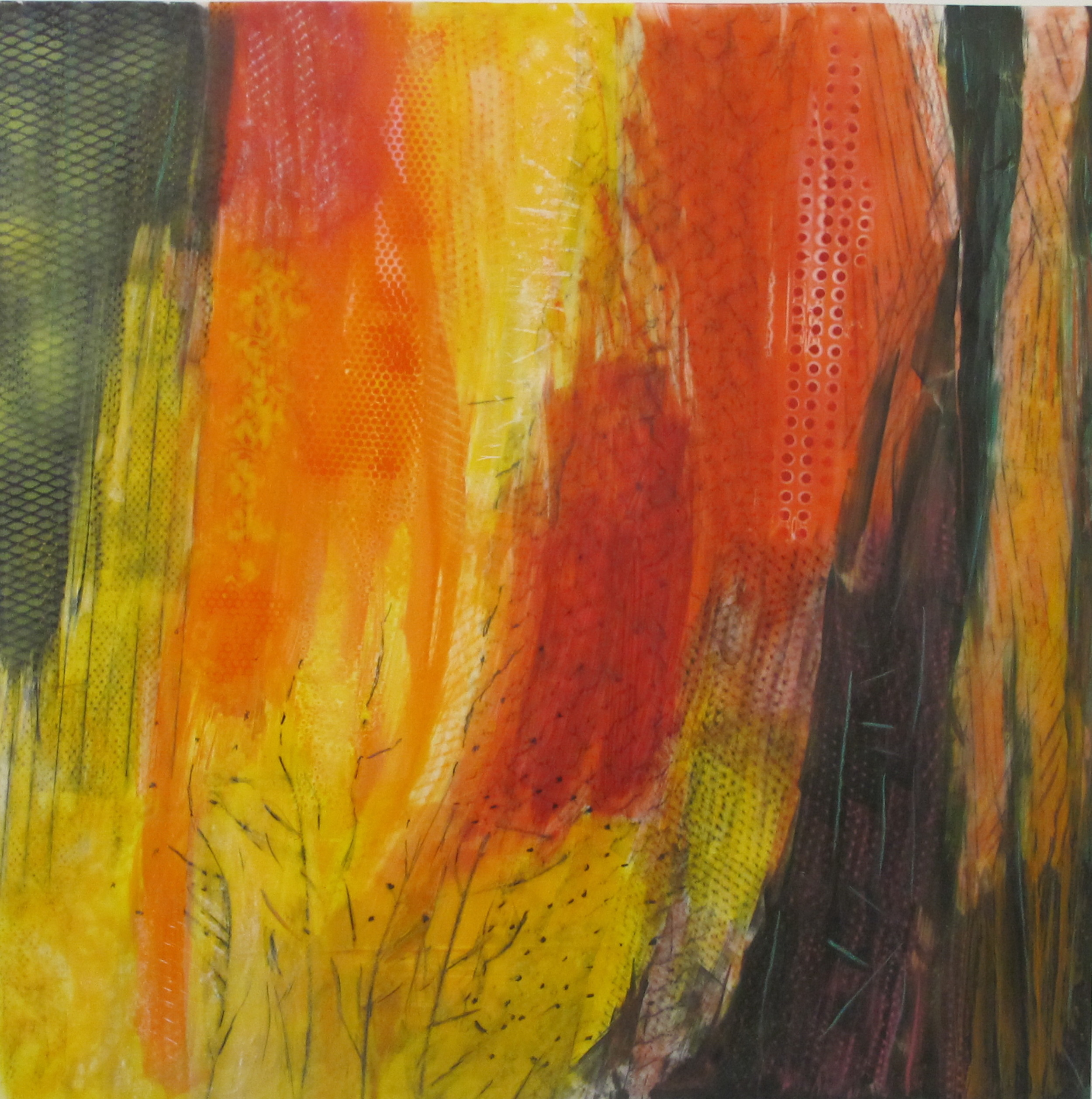29. Earth Scpae  Forest Fire  oil graphite mixed media on lexan 48 x 48 inches.jpg